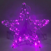 Top New RGB LED with Twinkle Party Garden Decoration lights indoor and outdoor use IP44