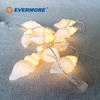 Evermore Conch String Light for Wedding and Room Decoration